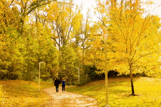 AutumnHikers