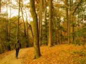autumnhiking